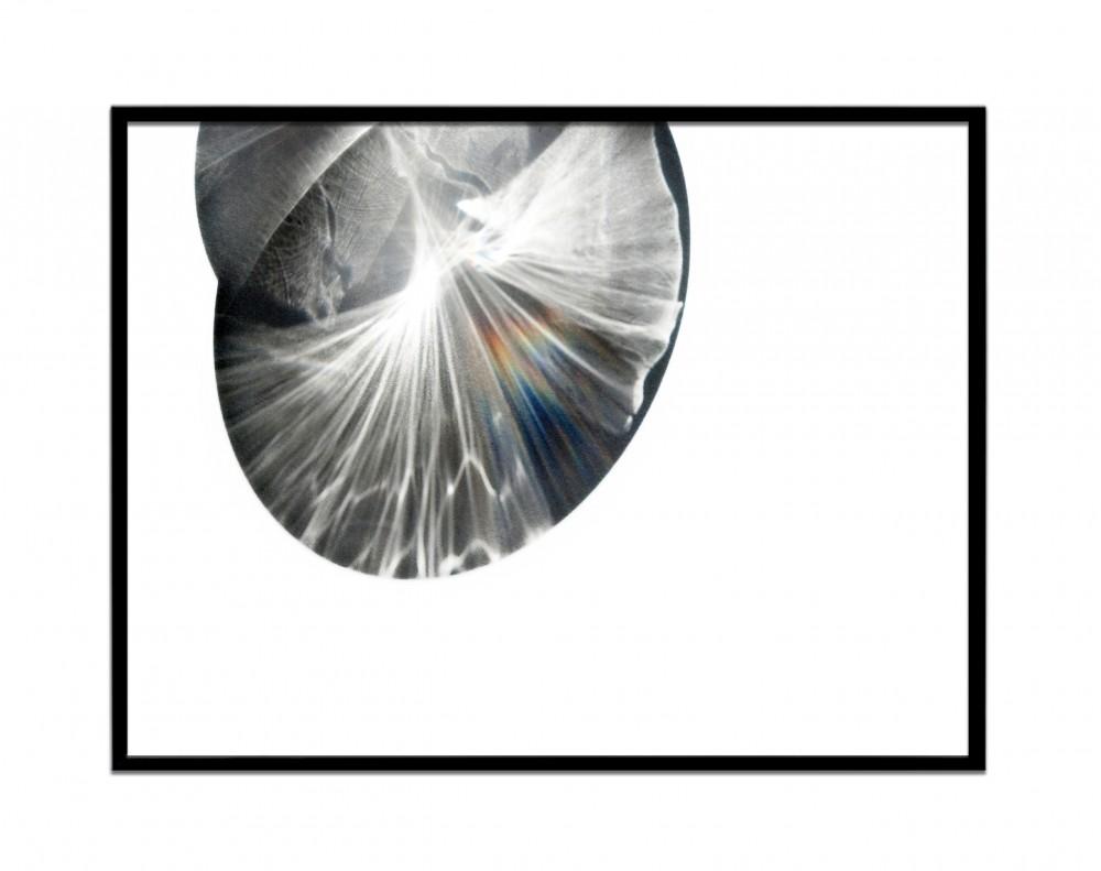 Glasstudie Rahmen 4